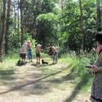 Pohádkový les (21)