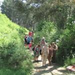 Pohádkový les (62)