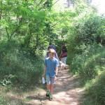 Pohádkový les (70)
