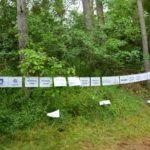 Pohádkový les 2016 (012)