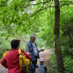 Pohádkový les 2016 (022)
