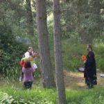Pohádkový les 2016 (098)